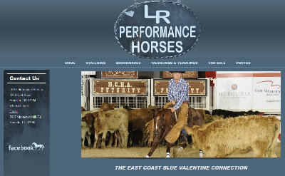 LR Performance Horses